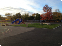 Our new playground equipment